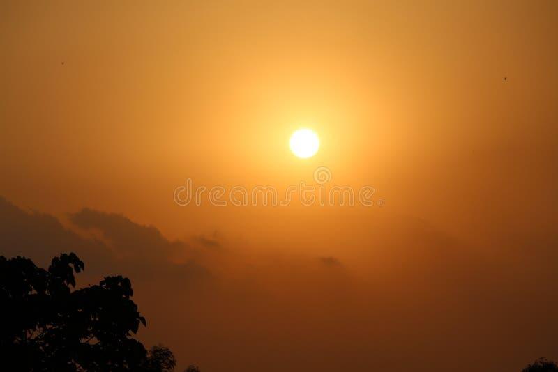 Opinión determinada de Sun del sombrero de Bastar - Chhattisgarh la India imagen de archivo