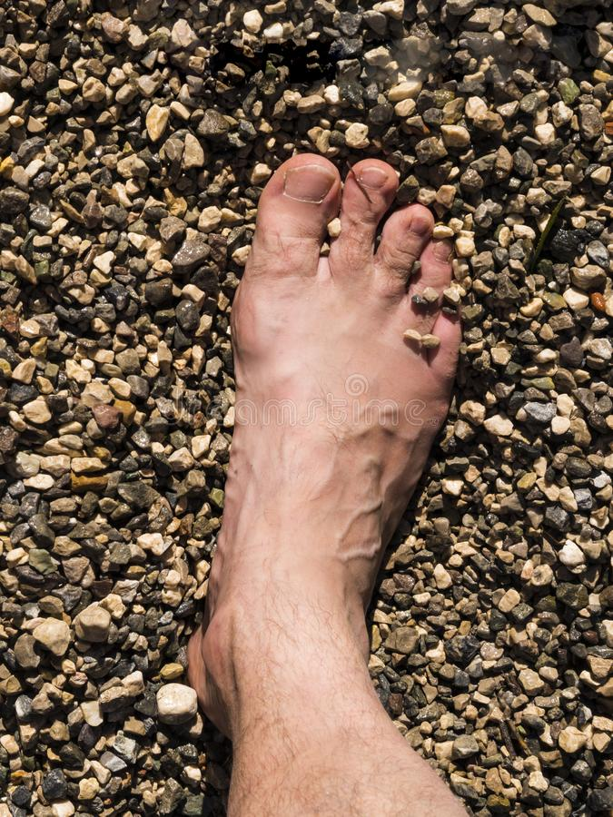 Opinión el pie de un hombre que se cubre con las piedras y la arena en la playa fotos de archivo