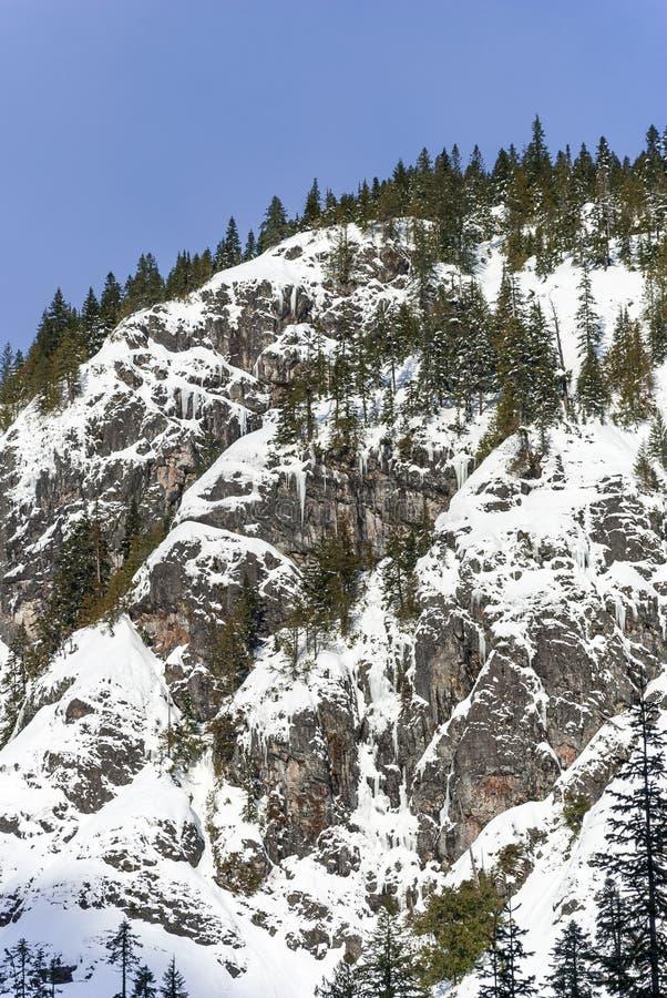 Opinión escénica del paisaje del invierno Forest Mountain Cliffs Covered en nieve del polvo foto de archivo libre de regalías