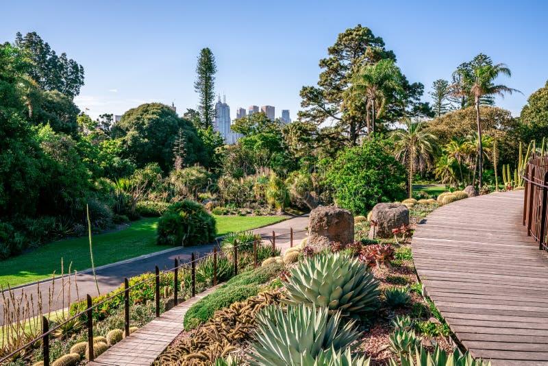Opinión escénica real de los jardines botánicos en Melbourne VicAustralia foto de archivo