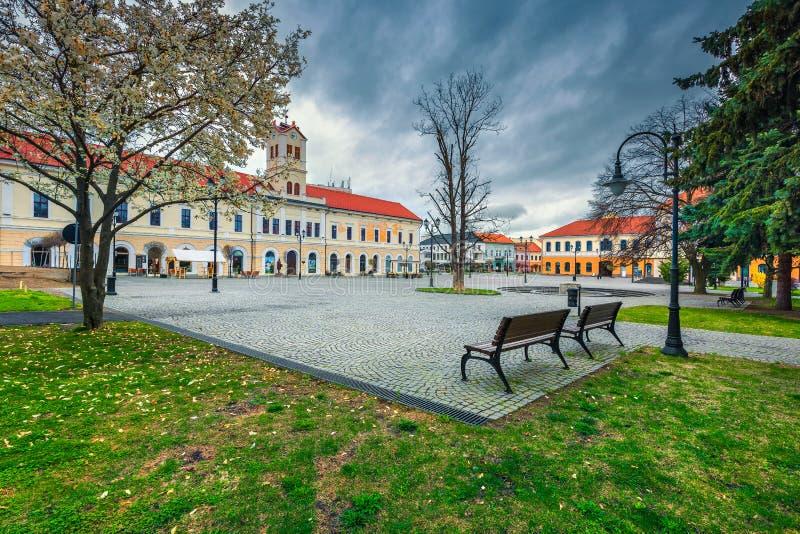 Opinión espectacular de la calle en el centro de ciudad de Sfantu Gheorghe, Transilvania, Rumania imágenes de archivo libres de regalías