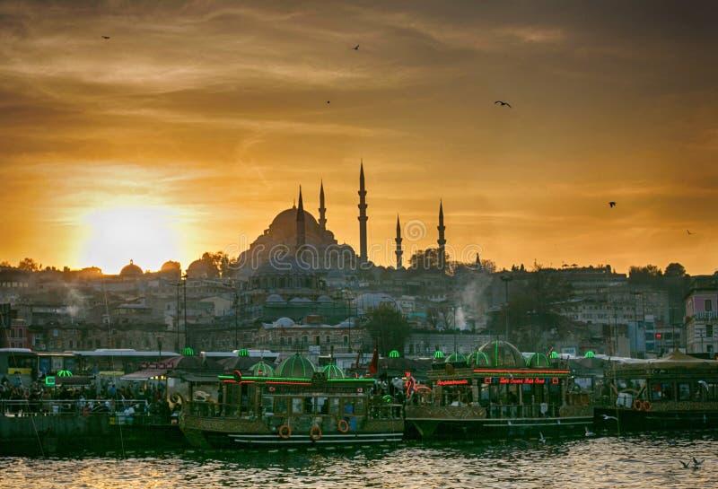 Opinión espectacular sobre Bosphorus imagen de archivo