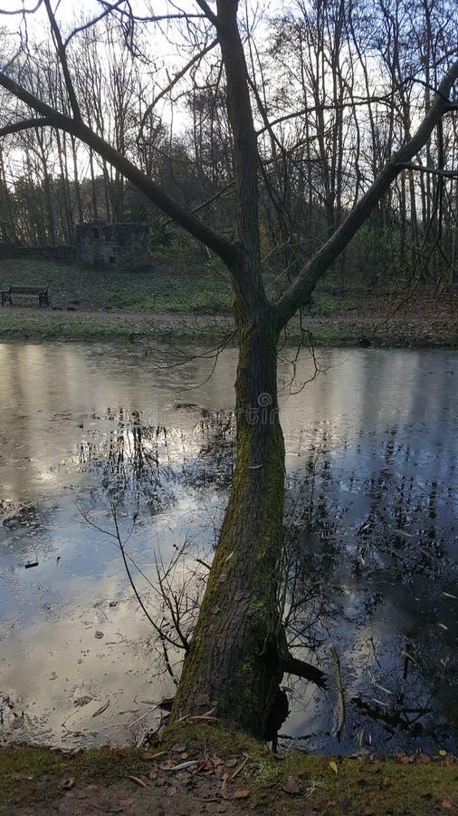 Opinión helada del lago fotos de archivo libres de regalías