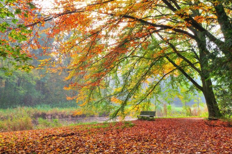 Resto del otoño fotografía de archivo