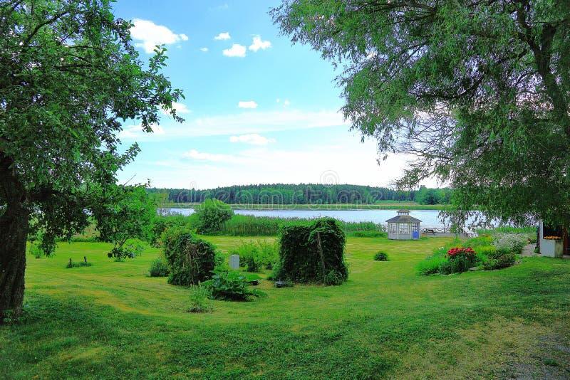 Opinión hermosa del paisaje de la naturaleza Césped de la hierba verde, arbustos y altos árboles en fondo del cielo azul fotografía de archivo libre de regalías