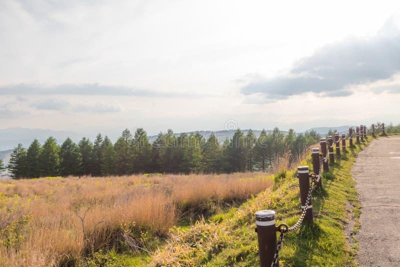 Opinión hermosa del paisaje del parque de Utsukushigahara con vagos del cielo fotografía de archivo libre de regalías