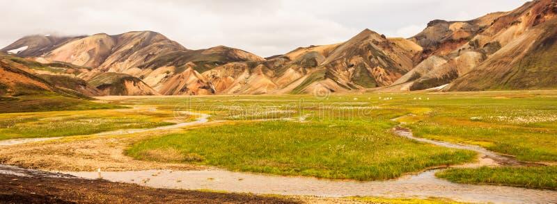 Opinión hermosa del verano del paisaje colorido del parque nacional de Landmannalaugar con el fondo de las cordilleras, Landmanna fotos de archivo libres de regalías
