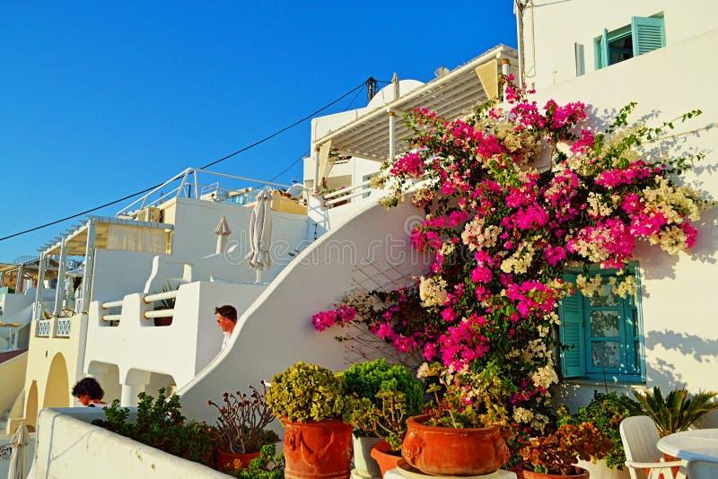 Opinión hermosa Imerovigli Santorini Grecia de la calle de las casas imagen de archivo