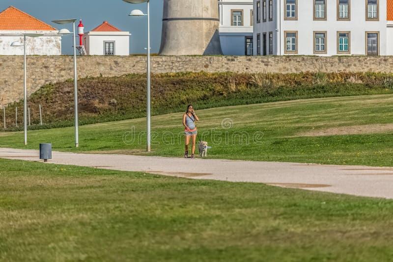 Opinión la mujer embarazada que habla en el teléfono móvil y que camina con el labrador retriever del perro imagen de archivo