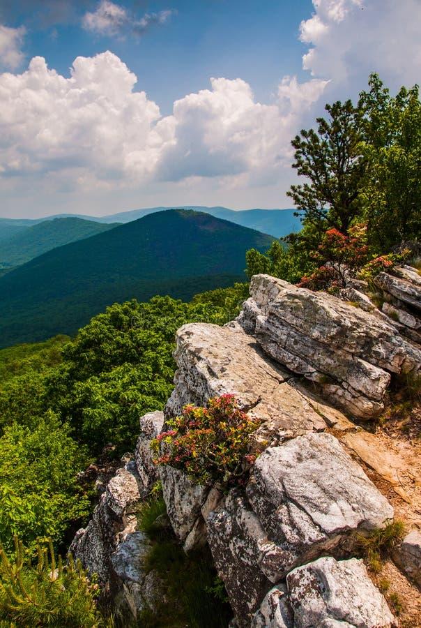 Opinión los apalaches de la cumbre del botón de Tibbet, Virginia Occidental. foto de archivo