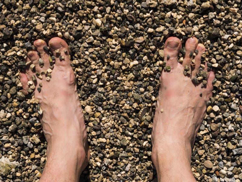 Opinión los pies de un hombre que se cubre con las piedras y la arena en la playa fotos de archivo