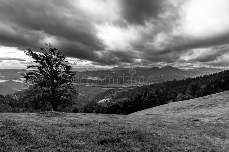 Opinión melancólica de cielo nublado sobre bosque de la gama de montañas imagen de archivo libre de regalías