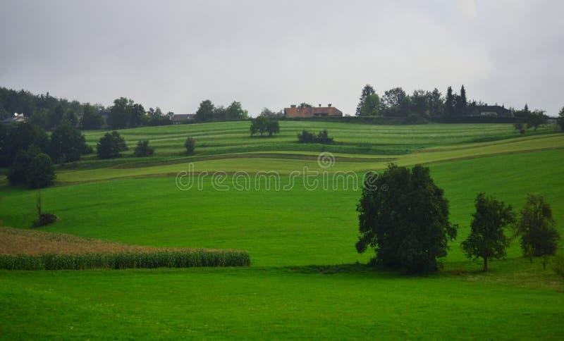 Opinión nublada Eslovenia Europa de día de verano del paisaje pastoral imagenes de archivo