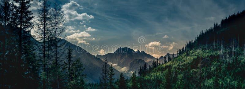 Opinión oscura y dramática sobre el pico de montaña en el valle fotografía de archivo libre de regalías