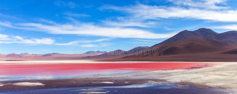 Opinión panorámica sobre Laguna Colorada, Uyuni, Bolivia fotografía de archivo
