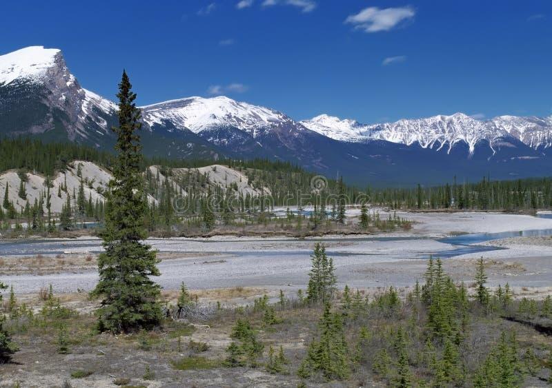 Opinión panorámica sobre las montañas canadienses de Rockies fotografía de archivo