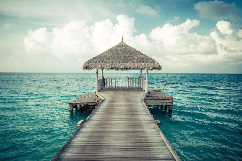 Opinión perfecta de la playa Diseño de las vacaciones de verano y de las vacaciones Playa tropical inspirada, palmeras y arena bl imágenes de archivo libres de regalías