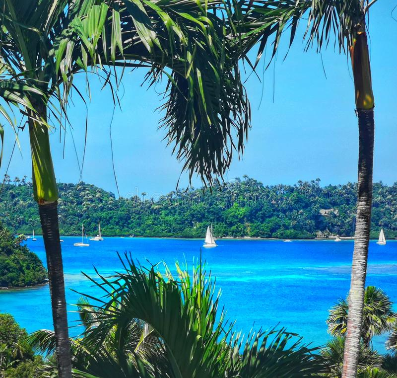 Opinión perfecta sobre el mar de Filipinas entre los palmtrees fotografía de archivo libre de regalías