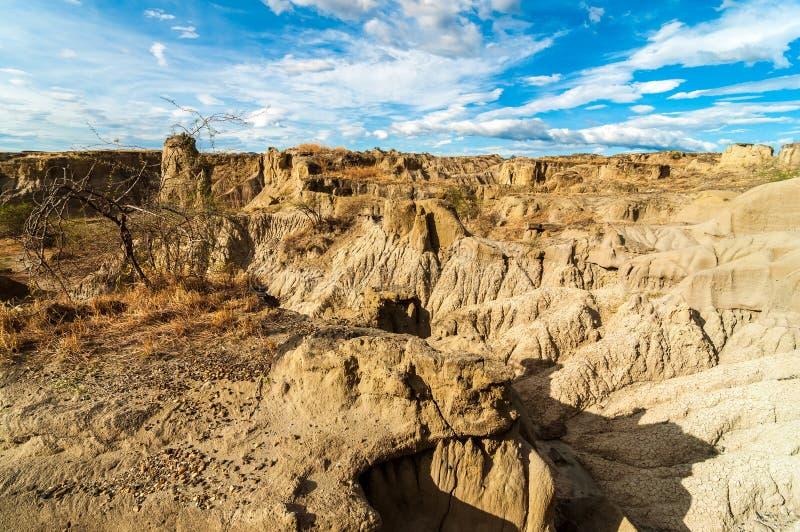 Opinión seca del desierto imagenes de archivo
