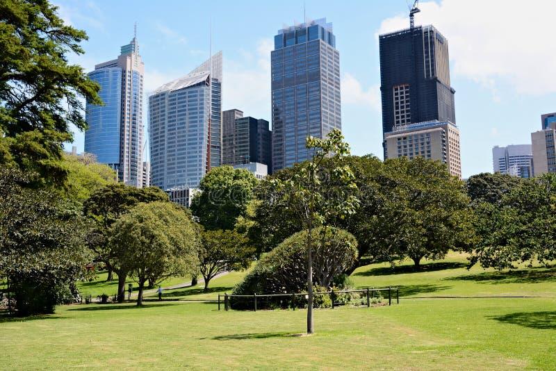 Opinión sobre centro de negocio del parque de la ciudad en Sydney imagenes de archivo