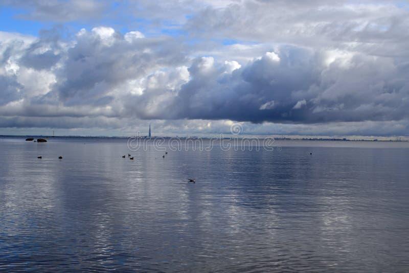 Opinión sobre el golfo de Finlandia en la estación del otoño imagen de archivo libre de regalías