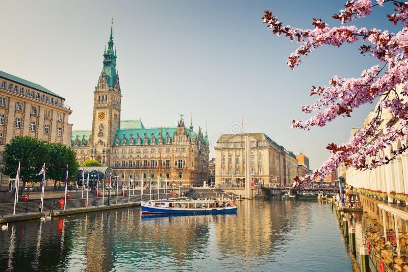 Opinión sobre el townhall de Hamburgo en la primavera imagen de archivo