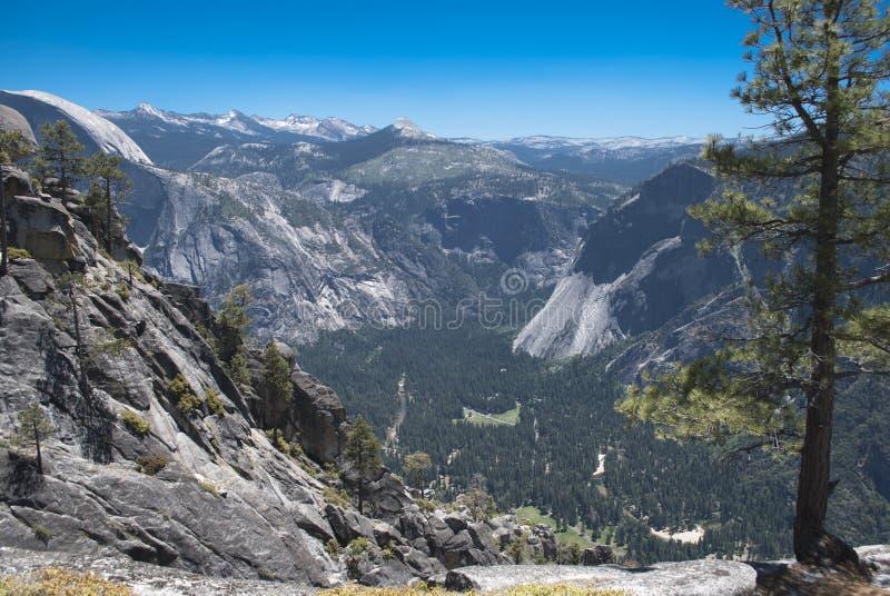 Opinión sobre el valle desde arriba de la montaña y de los picos de mauntains a través del bosque del pino fotografía de archivo