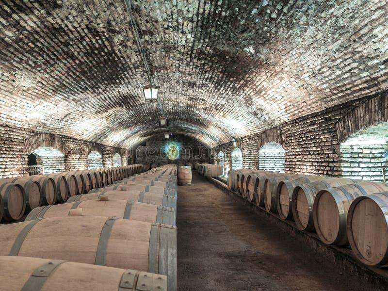 Opinión subterráneo del distilery del vino del chilena foto de archivo libre de regalías