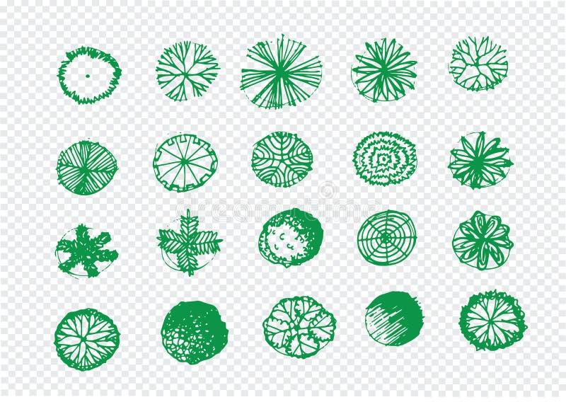 Opinión superior de los árboles para los proyectos de diseño del paisaje de la arquitectura stock de ilustración