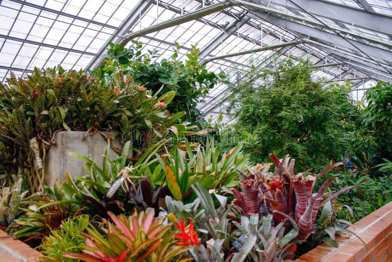 Opinión superior de los jardines botánicos fotos de archivo libres de regalías