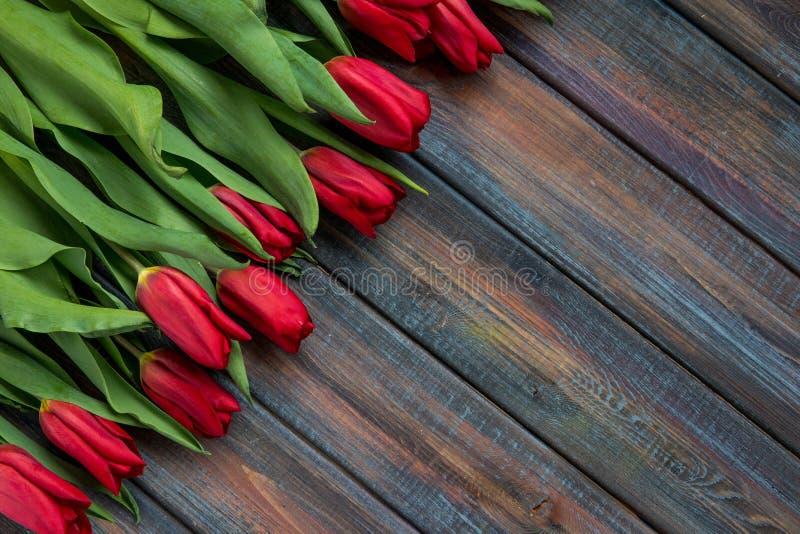 Opinión superior de los tulipanes rojos con el espacio de la copia fotografía de archivo libre de regalías