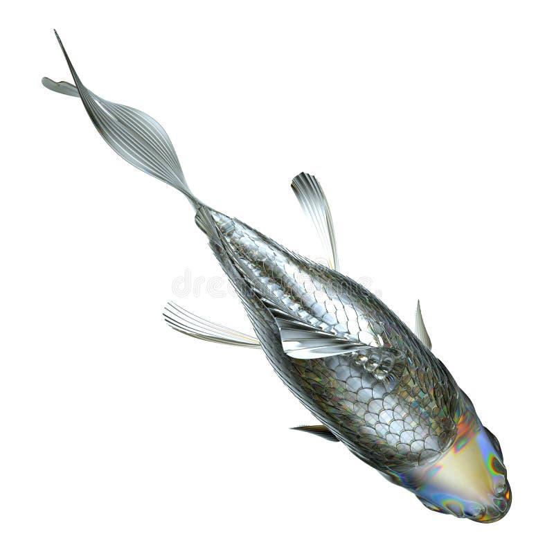 Opinión superior los pescados de cristal aislados libre illustration