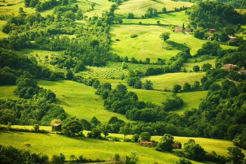 Opinión superior sobre el paisaje verde de Toscana, Italia imagen de archivo