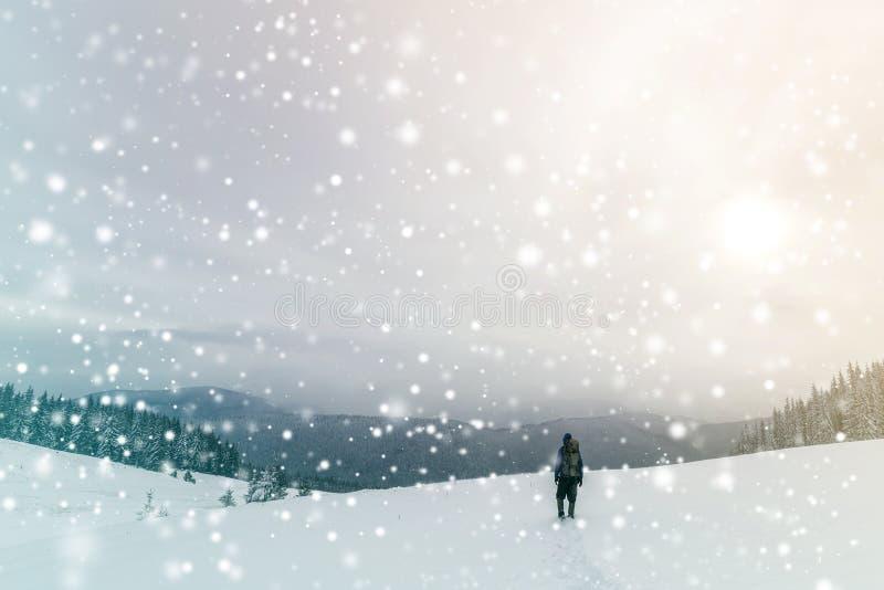 Opinión trasera el caminante turístico en ropa caliente con la mochila que camina las montañas ascendentes cubiertas con nieve en fotos de archivo