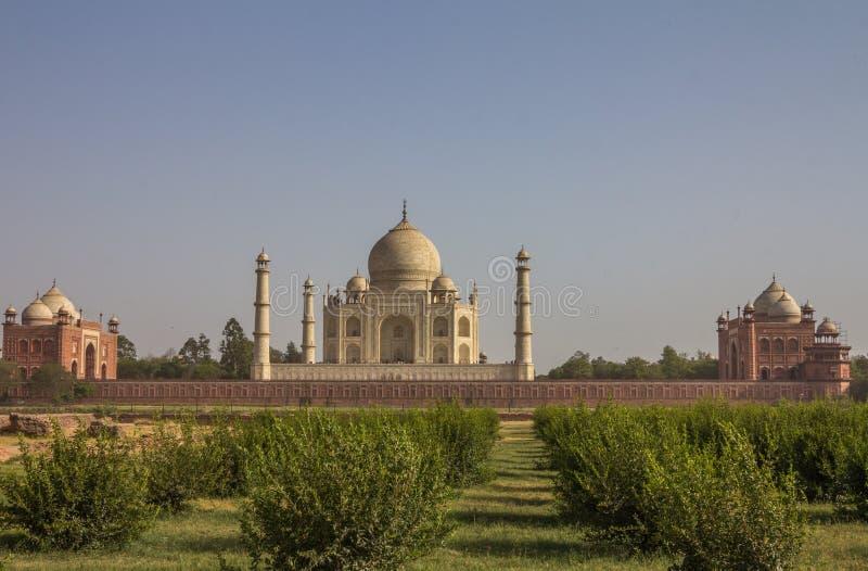 Opinión trasera Taj Mahal imagenes de archivo