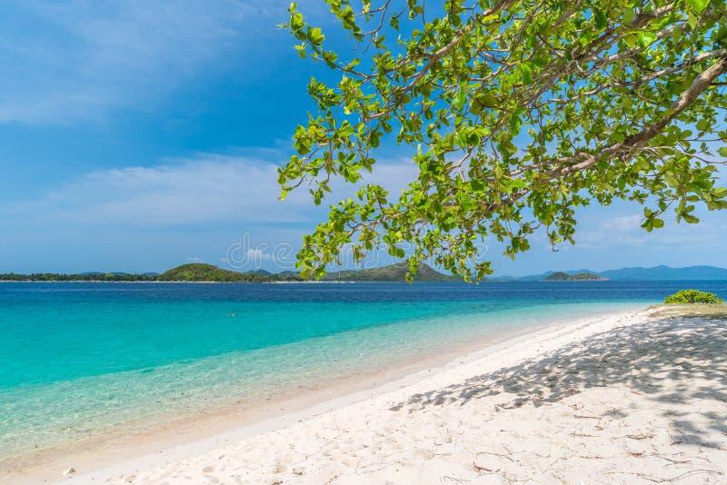 Opinión tropical sobre la isla del DOS de Bulog, Palawan del paisaje marino de la playa fotografía de archivo libre de regalías