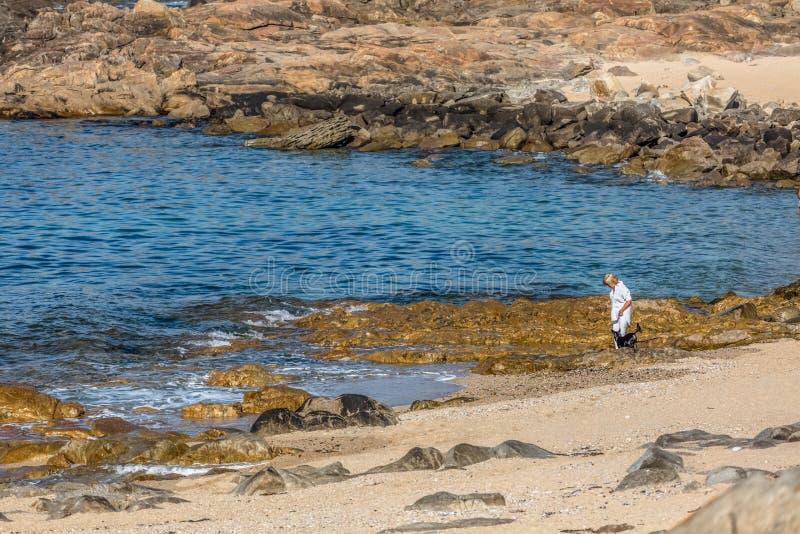 Opinión una mujer rubia y mayor que da un paseo en la playa rocosa con su pequeño perro casero negro imagen de archivo libre de regalías