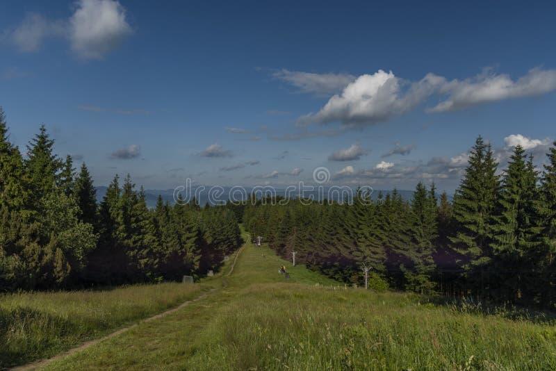 Opinión verde del verano de la colina de Javorovy en día caliente agradable fotografía de archivo libre de regalías