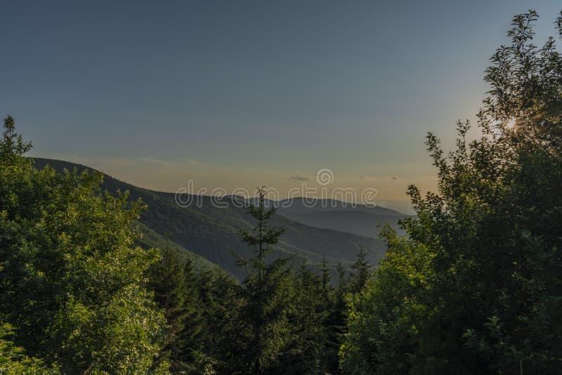 Opinión verde del verano de la colina de Javorovy en día caliente agradable fotos de archivo