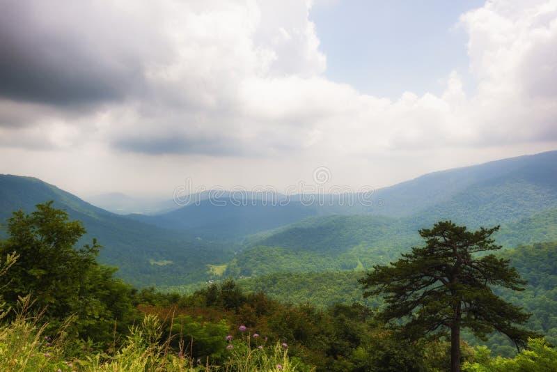 Opiniões de parque nacional de Shenandoah ao longo da movimentação da skyline foto de stock