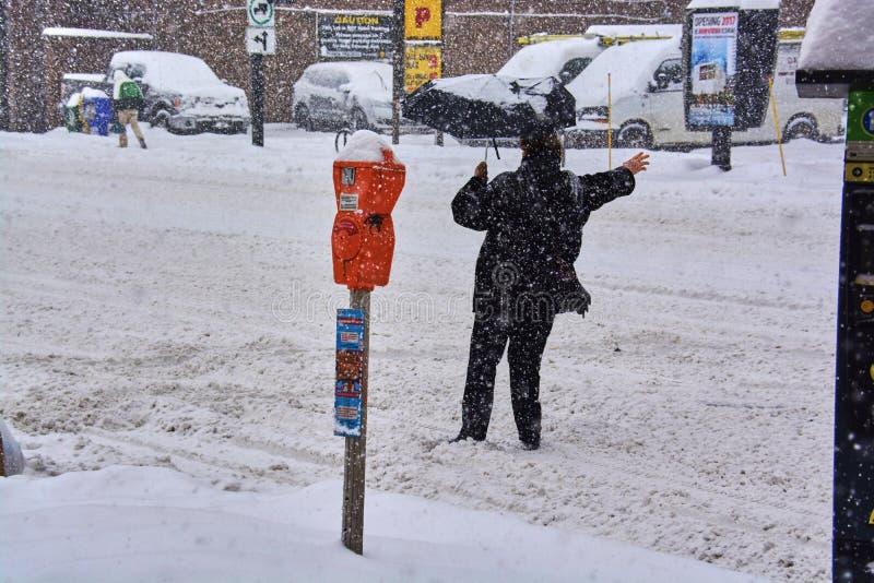Opiniões do inverno de Canadá imagem de stock royalty free