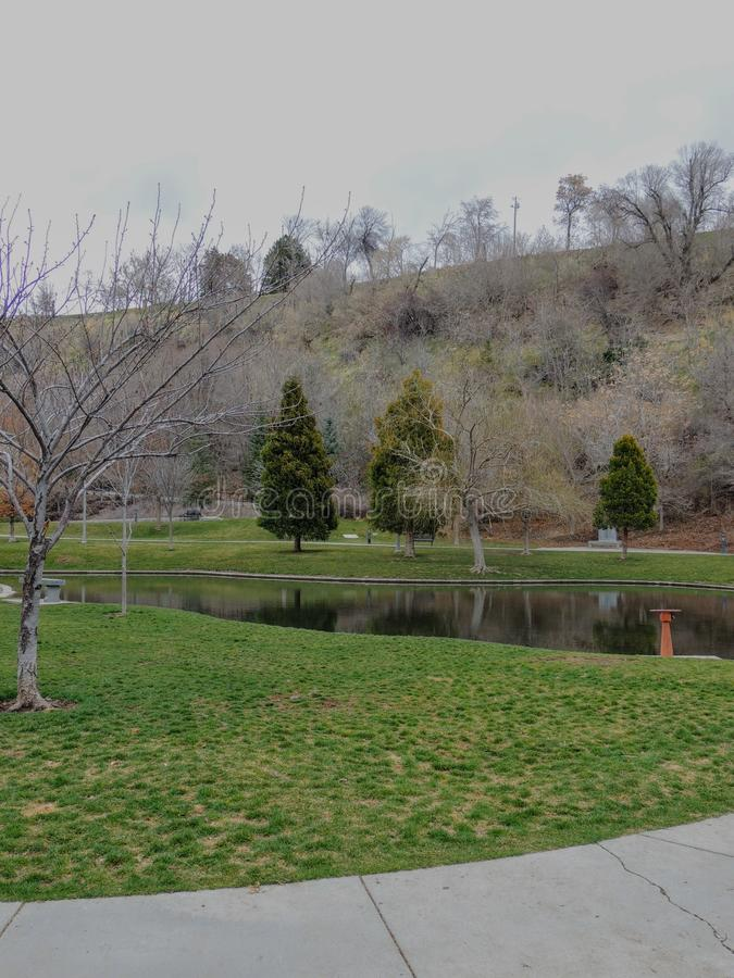 Opiniões do parque do bosque da memória das cachoeiras e dos córregos que conduzem em uma lagoa ou em um lago pequeno cercada por fotografia de stock royalty free