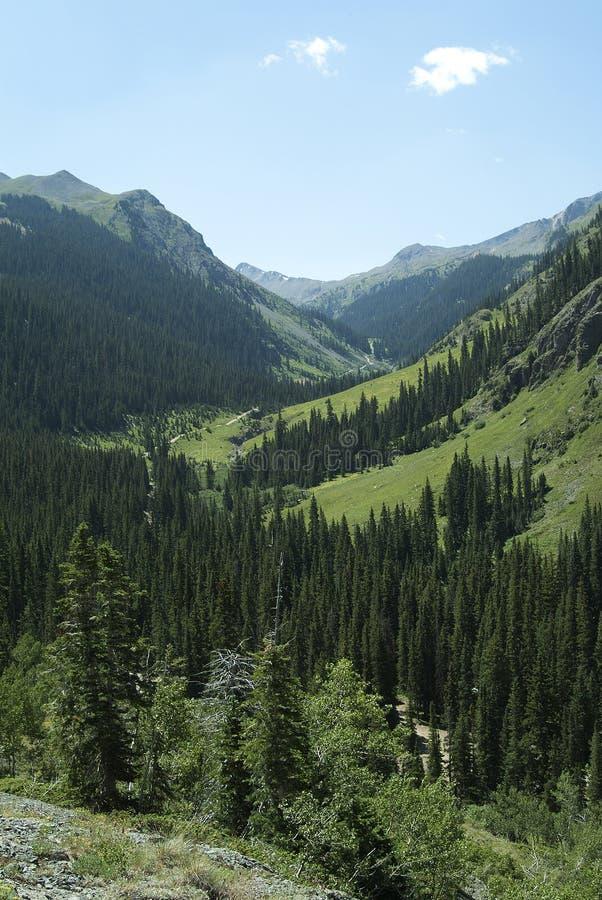 Colorado 3 imagens de stock royalty free