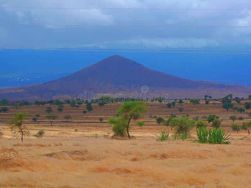Opiniões tanzanianas da paisagem do savana de Arusha fotografia de stock