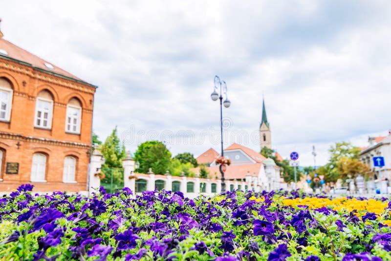 Opini?n del paisaje urbano de Zagreb calle con la torre de iglesia de las flores en fondo foto de archivo