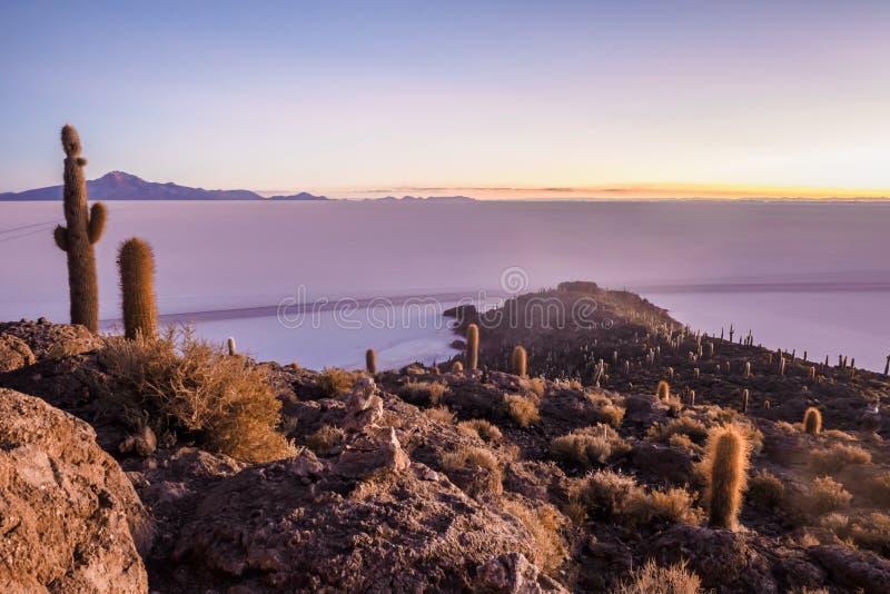 Opini?n Salar de Uyuni en la salida del sol de la isla Incahuasi en Bolivia imágenes de archivo libres de regalías