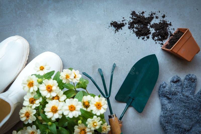 Opini?n superior sobre cultivar un huerto una pala llenada de la herramienta en conserva en el tiempo de primavera del verano del fotografía de archivo libre de regalías