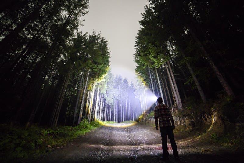 Opini?n trasera el hombre con la situaci?n principal de la linterna en el camino de la tierra del bosque entre ?rboles brillantem imagen de archivo
