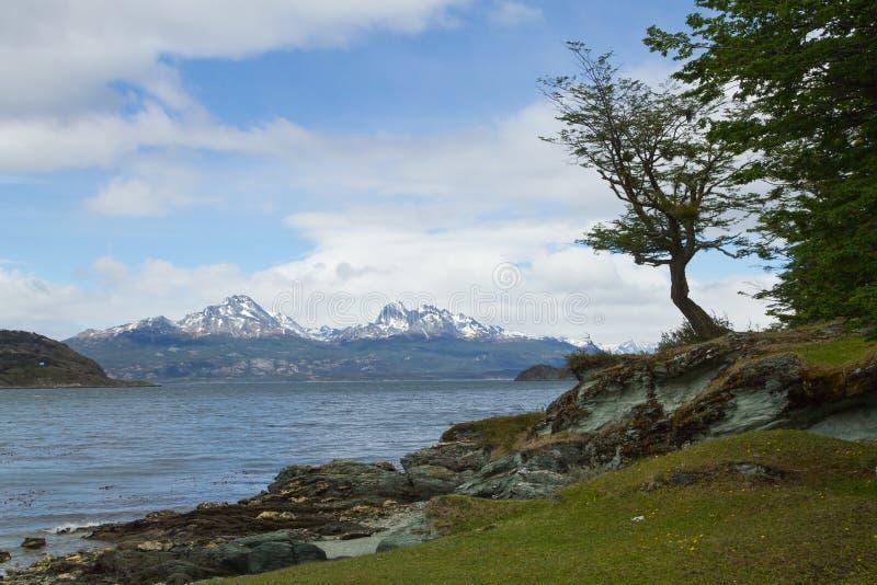 Opini?o da ilha de Hoste, Tierra Del Fuego National Park, Argentina imagem de stock royalty free
