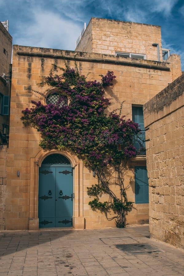 Opini?o da rua em Mdina, Malta fotos de stock